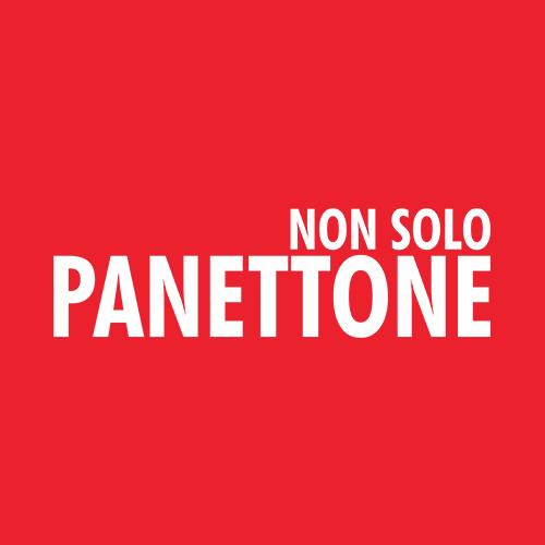 NON SOLO PANETTONE